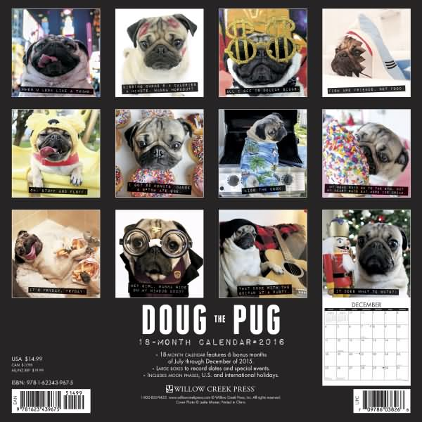 Pugs dogbreed gifts pug calendars doug the pug calendar 2016 doug the pug calendar 2016 m4hsunfo